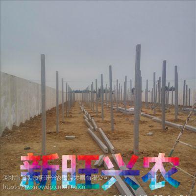 新旺兴农圆拱蔬菜保温大棚7402种植大棚配件