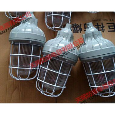 BAD52-nL100b1Z防爆灯(工程塑料)100W配镇流器