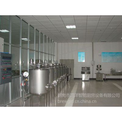 供应常年加工制造自酿啤酒设备酿造培训技术