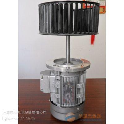 加长轴电机,0.75KW热循环轴加长电机,