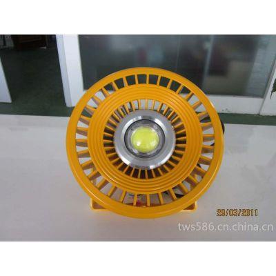 供应供应中普防爆DED-81防爆LED灯泛光灯
