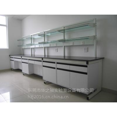 《东莞实验家具厂家》 实验室设备 通风柜 操作台 华之骏钢制