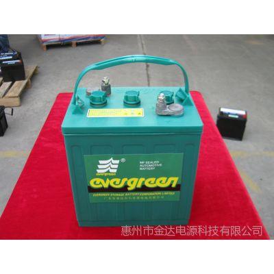 供应厂家批量供应8V电动高尔夫球车观光浏览车电瓶电动