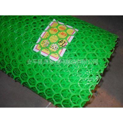 供应绿色塑料养殖网