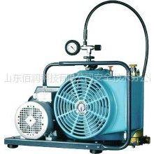 供应宝亚呼吸器填充泵,霍尼韦尔juniorII空气压缩机充气泵