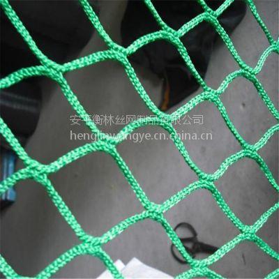 涤纶有结网 防鸟塑料网 衡林厂家生产供应