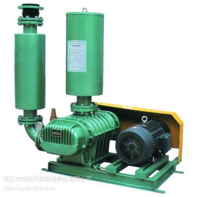 污水处理配套设备CSR罗茨风机广州销售处13176669878
