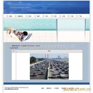 供应网络摄像机台湾蓝眼科技BlueEyes解决方案