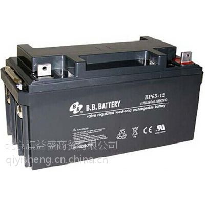 BB蓄电池BP200-12 12V200AH厂家现货