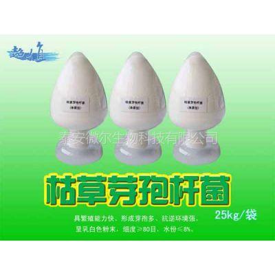 供应绿色无公害活菌制剂|饲料添加剂