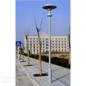 供应河北金海光电供应40wjht-7009led庭院灯