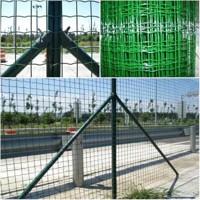 镀锌电焊网 焊接钢网 养殖铁丝网