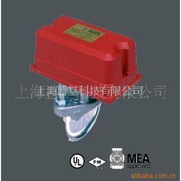 供应WFD/ZSJZ进口水流指示器