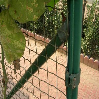 现货鸡鸭鹅养殖围网 简易好安装圈地铁丝网 种植基地防护网