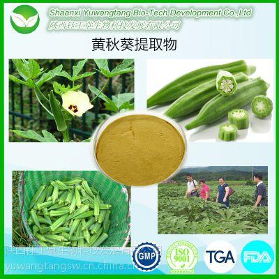 工厂供应高品质黄秋葵提取物