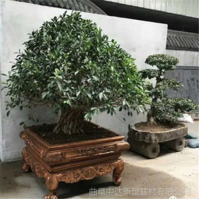 济宁景观盆景盆/仿古造型水泥花盆 厂家专业制造