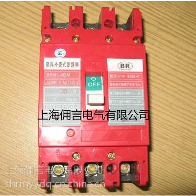 1140v塑壳式断路器BRM3-100上海佣言电气