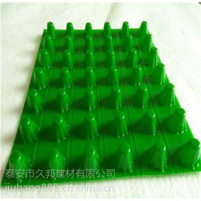 12mm排水板价格,龙亭区排水板,蓄排水板