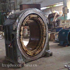 供青海电机维修和西宁高压电机维修