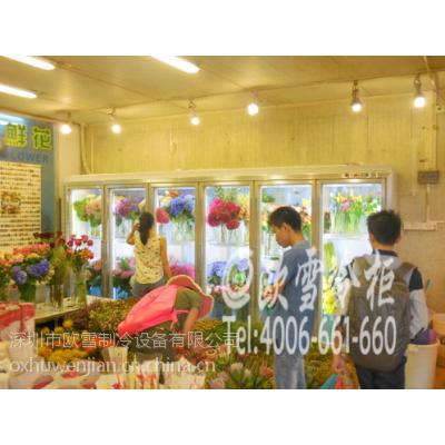 供应四川西南花卉市场超豪华六门分体式设计鲜花保鲜柜