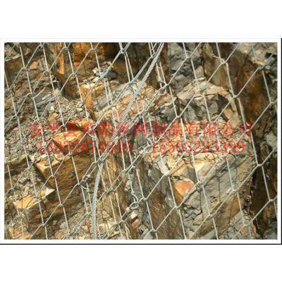 供应格栅网,钢丝格栅网,钛克网,布鲁克网