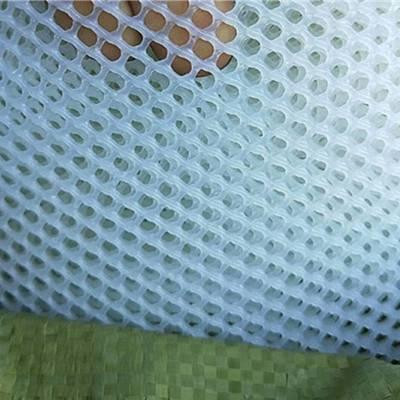 供应白色、绿色、黑色塑料鸡鸭养殖网 耐老化聚乙烯材质 耐磨不卡动物 上善