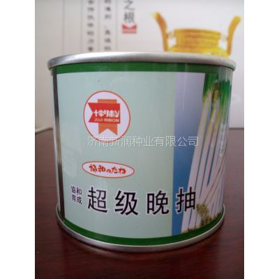 【晚抽性能好】 日本进口大葱种子【日本协和】超级晚抽