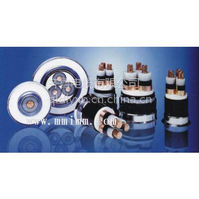供应齐鲁牌铜芯聚乙烯绝缘聚乙烯护套交联电缆YJV32 4*2.5+1*1.5