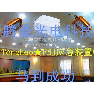 供应端午节★Tenghao★FBJ应急装置㊣好感动☆当我看到大雨中的刘哥,拿着2个粽子☆