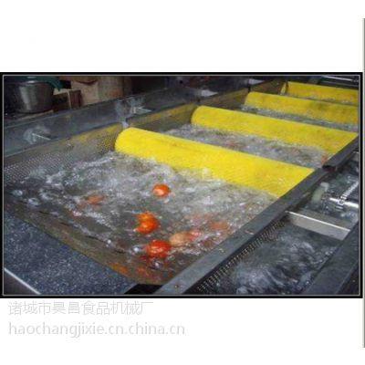 供应供应蔬菜清洗机 鼓泡式汽浴清洗机 金针菇蔬菜清洗机