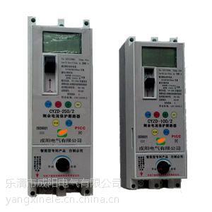 CYZD-250A/2P 剩余电流动作断路器 单相重合闸断路器 CHANY提供