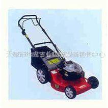 供应各种园林机械:草坪机;割草机;绿篱机;吹风机;地钻