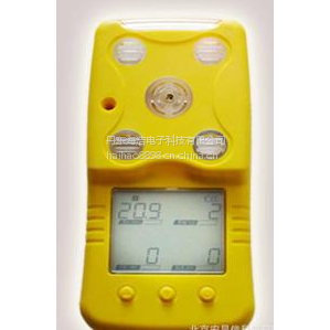 便携式气体检测仪BX626