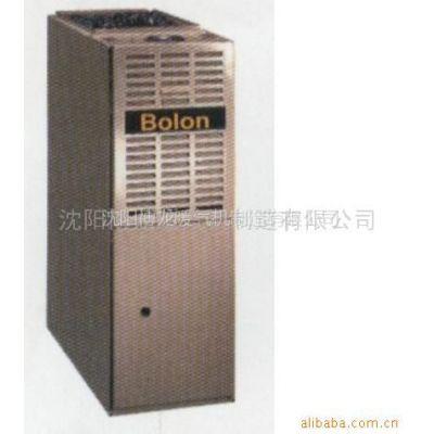 供应家用燃气暖气机(博龙牌)(图)