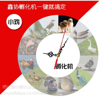 鑫协牌鸭孵化机全自动鸭孵化器