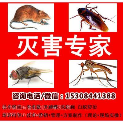 灭鼠培训灭鼠加盟灭鼠技术培训战虫网全国咨询电话0731-86869800