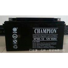 广东蓄电池NP65-12/12V65AH/UPS不间断电源专用铅酸免维护