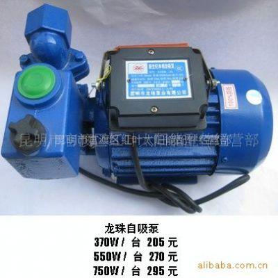 供应龙珠自吸清水泵 管道泵 型号齐全