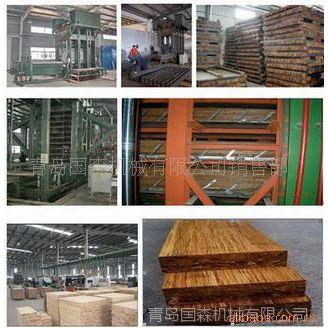 供应青岛国森专利重组竹地板压机设备