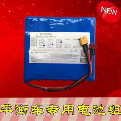 独轮车电池组67.2V 进口平衡车火星车专用动力锂电池 电源