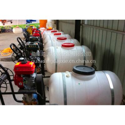 鼎达打药车农业植保机械手推式 电机带动农喷雾打药机