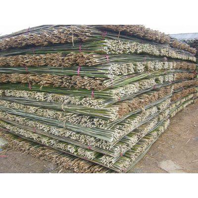 供应长期供应各种菜架竹、大棚竹、蔬菜牵引竹等