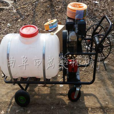 果园除虫喷雾机 自走式打药机 手推式四轮喷雾器打药机