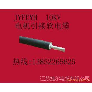 现货供应捷尔牌JFEYH 10KV 25mm2 电机引接线