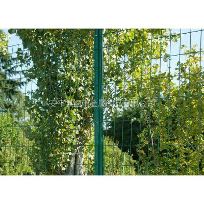 广西果园防护荷兰网/果园围栏/果园波浪形护栏网