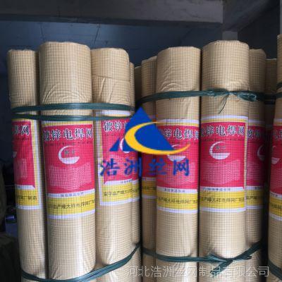 浩洲生产小丝墙体防裂网 厂家直销抹墙铁丝电焊网 供应保温抹墙网