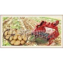 供应2013新款土豆收获机震撼上市!【曲阜华新】欢迎来电咨询
