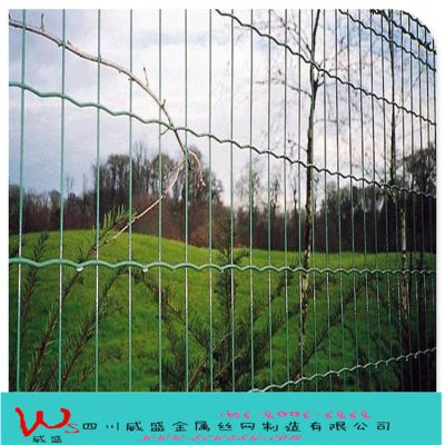 【荷兰网】铁丝养殖网|成都铁丝养殖网|家禽铁丝养殖网