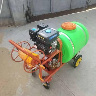 汽油7.5马力打药机 富兴自走式打药机 小麦专用高压打药车厂家图片