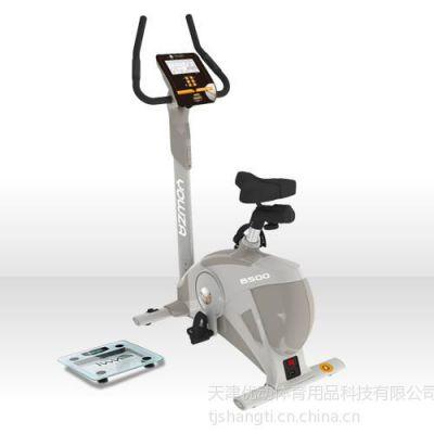 供应美国优沃YOWZA健身车B500